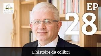 Amiens28