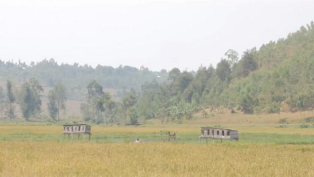 fidescorwanda